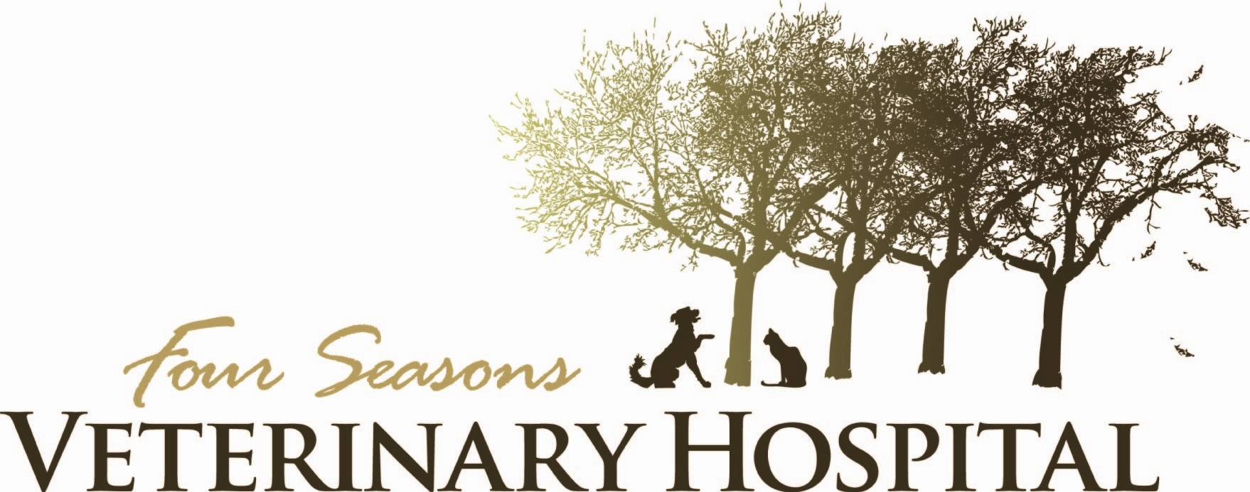 Four_Seasons_Vet_Logo_by_Ed